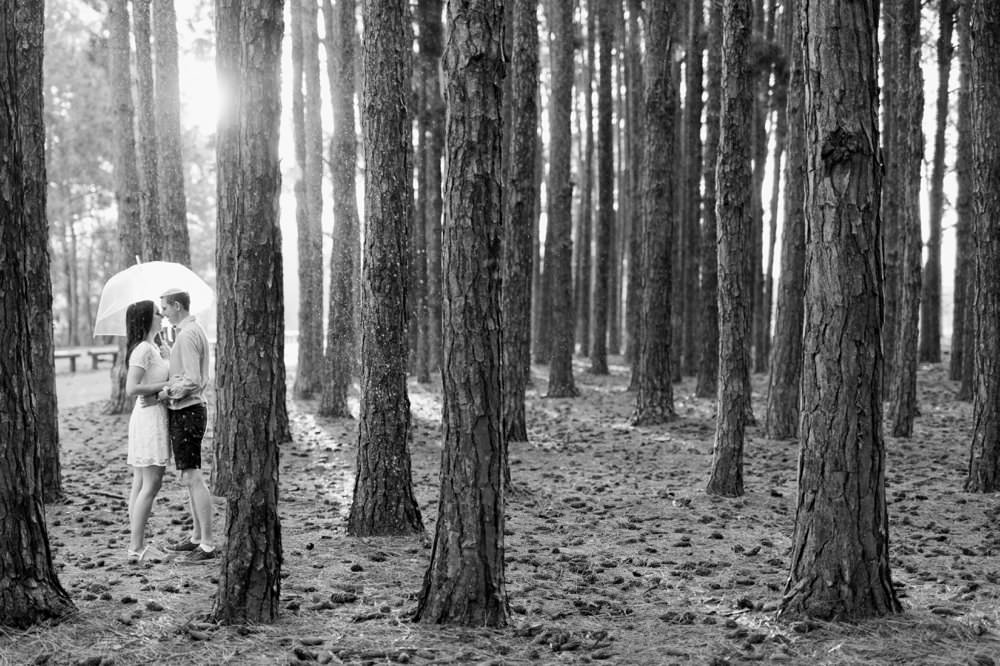 Pine Forest Gold Coast Engagement by Mario Colli Photography